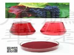 grape red color