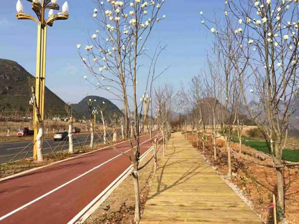 濟南彩色景觀路面彩色防滑車道 2