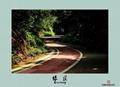濟南彩色景觀路面彩色防滑車道 3
