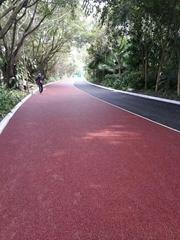 贵溪彩色防水路面人行道彩色沥青