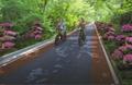 濟南防滑路面彩色防滑路面 3