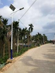 Factary outsale, greart quality, reasonable price! Solar LED Street Light