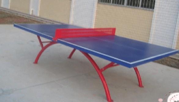 室內外乒乓球台 1