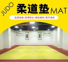 Judo mat