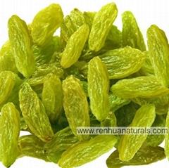 Manufacture Organic Raisins