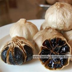 Organic Black Garlic Fermented Black
