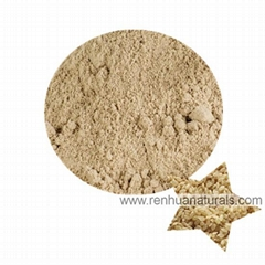 Sell Rice Protein Powder Brown Rice Protein Powder 80%