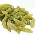 Xinjiang Raisin High Quality Wholesale Price 1