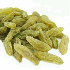 Xinjiang Raisin High Quality Wholesale Price