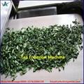 Stainless Steel Microwave Tea Dryer