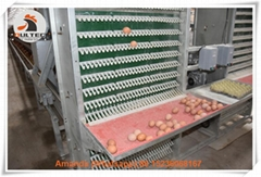 Battery chicken cage for