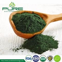 Organic Green Spirulina Powder