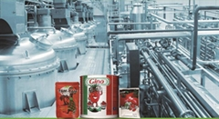 Canned Tomato Paste Ketchup Sauce Sachet Packing Machine Turnkey Project