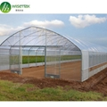 Hot Sale Single-Span Film greenhouse