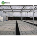 Hot sale greenhouse rolling benches ebb&flow table for commercial agriculture 3