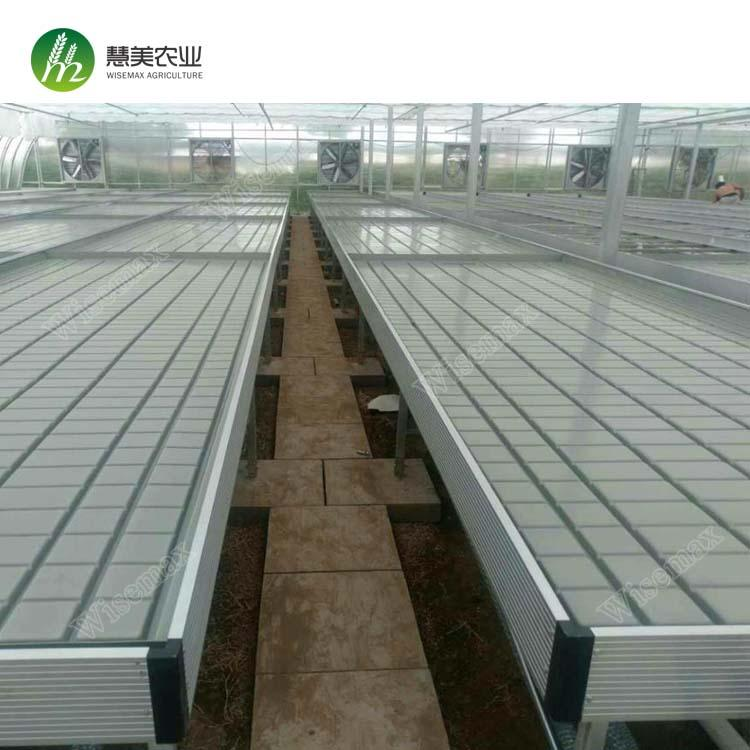 Hot sale greenhouse rolling benches ebb&flow table for commercial agriculture 4