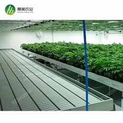 Hot sale greenhouse rolling benches ebb&flow table for commercial agriculture