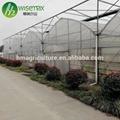 Hot galvanized steel frame agricultural