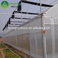 Multispan galvanized steel frame