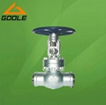 API Welded Gate Valve (GAZ61Y)