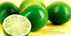Fresh Lemon seedless Lime best price 2018