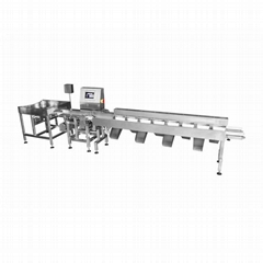 FX40076高速、高精度双轨式多级重量分级机 鲍鱼/海参分选设备