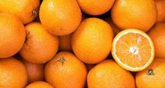 Fresh orange - Low Price - Finest quality - Egyptian Orange