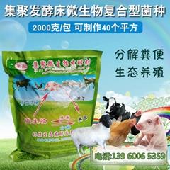 养猪场发酵床发酵剂