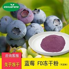 華芳FD真空凍干藍莓粉