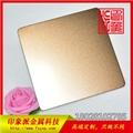 304玫瑰金不鏽鋼噴砂板廠家生產 2