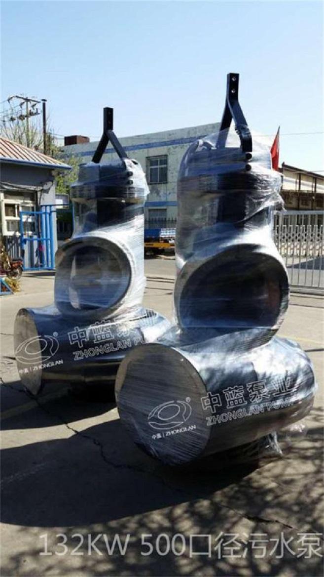 潜水排污泵大口径污水处理泵站现货 4