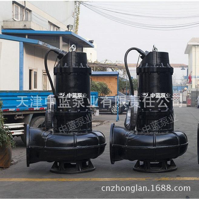 WQAS排污泵无堵塞输送脏水用泵 1