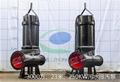 WQAS排污泵无堵塞输送脏水用泵 2