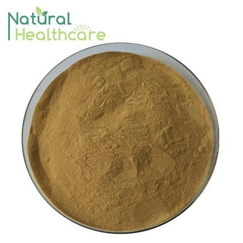 Aloe vera extract 1