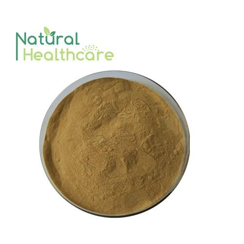 High Quality Bearberry Leaf Extract 1