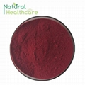Best selling organic natural acai berry