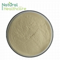 Best Ginseng Extract Powder