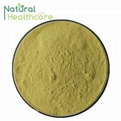 Good price organic olive leaf extract