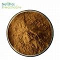 Polyphenols 5% Vitamin C tablet 1000mg
