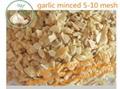 wholesale roast garlic flavor powder food