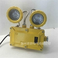 2X3WLED防爆雙頭應急燈