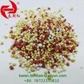 NPK blended fertilizer 15-15-15 1
