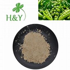 pea protein 80%
