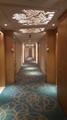 阿克明酒店地毯 2