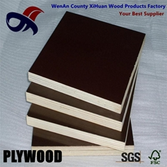 building materials cheap price film faced plywood