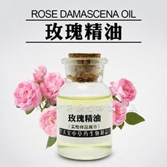 華天寶廠家熱銷 玫瑰精油