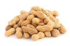 In-shell Peanut