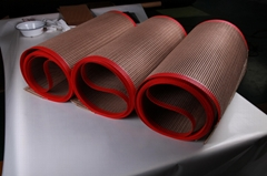 PTFE fiberglass mesh conveyor belt