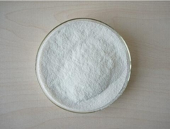 CHITOSAN POWDER WITH HIGH QUALITY