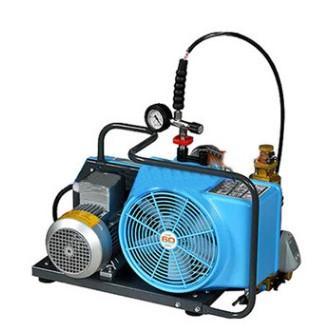 德國寶華Junior II 100L高壓氣瓶充氣泵 1